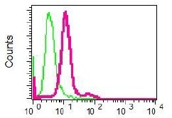 Flow Cytometry - Anti-Renin antibody [EPR6433] (ab125012)