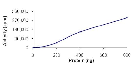Functional Studies - Recombinant human NEK11 protein (ab125544)