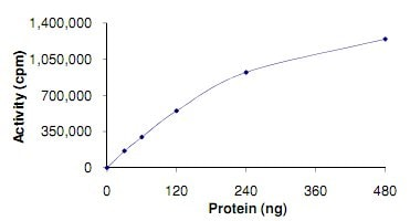 Functional Studies - Recombinant human KDS protein (ab125551)