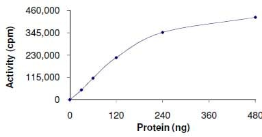Functional Studies - Recombinant human MAP3K9 protein (ab125554)