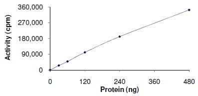 Functional Studies - Recombinant human MLK2 protein (ab125562)
