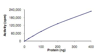 Functional Studies - Recombinant human RIP3 protein (ab125566)