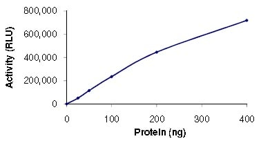 Functional Studies - Recombinant human PI3 Kinase p110 beta + PI3 Kinase p85 beta protein (ab125571)
