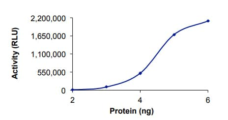 Functional Studies - Recombinant human PDE4B protein (ab125582)