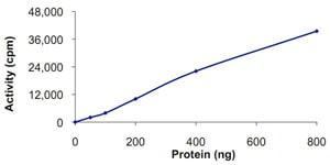 Functional Studies - Recombinant human GRK7 protein (ab125599)