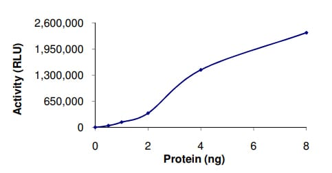 Functional Studies - Recombinant human PDE2A protein (ab125613)