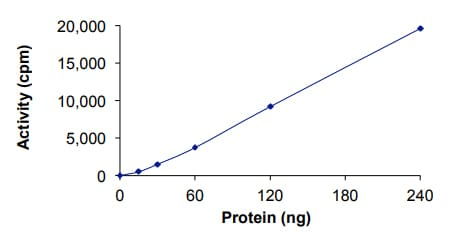 Functional Studies - Recombinant human GRK2 protein (ab125620)