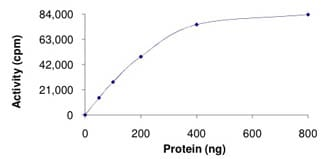 Functional Studies - Recombinant mouse TTBK2 protein (ab125631)