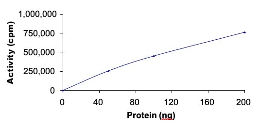Functional Studies - Recombinant human p38 delta/MAPK13 protein (ab125643)