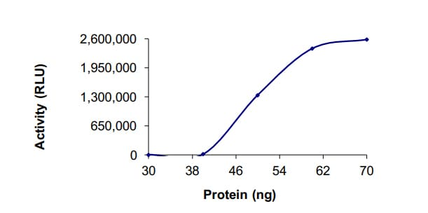 Functional Studies - Recombinant human PDE4C protein (ab125647)