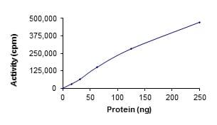 Functional Studies - Recombinant human ULK1 protein (ab125656)