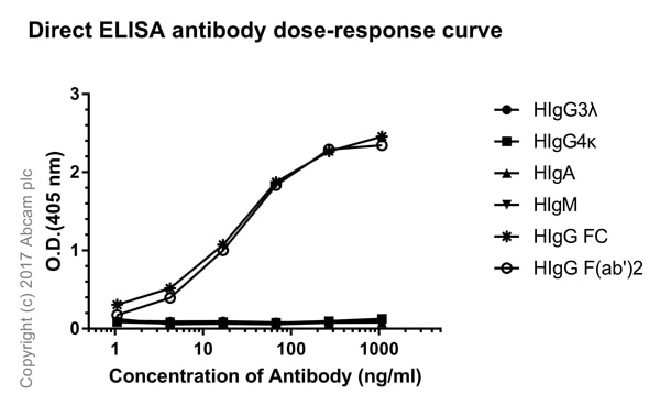 ELISA - Rabbit monoclonal [H26-10] Anti-Human IgG1 H&L (ab125912)