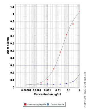 ELISA - Anti-RNA polymerase II CTD repeat YSPTSPS (phospho S7) antibody (ab126537)