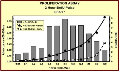 Indirect ELISA - BrdU Cell Proliferation ELISA Kit (colorimetric) (ab126556)