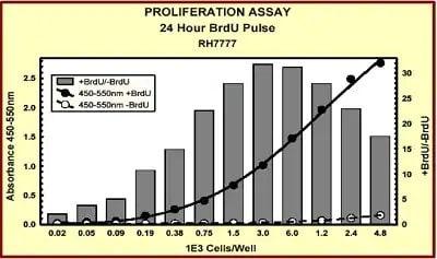 Indirect ELISA - BrdU Cell Proliferation ELISA Kit (colorimetric) (ab126556)