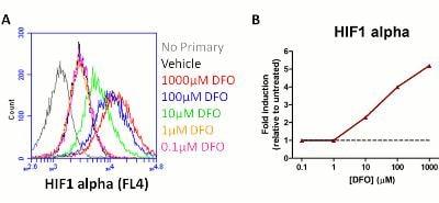 Flow Cytometry - HIF1a + BNIP3 Hypoxia Flow Cytometry Kit (ab126585)