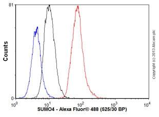 Flow Cytometry - Anti-SUMO4 antibody [EPR7163] (ab126606)