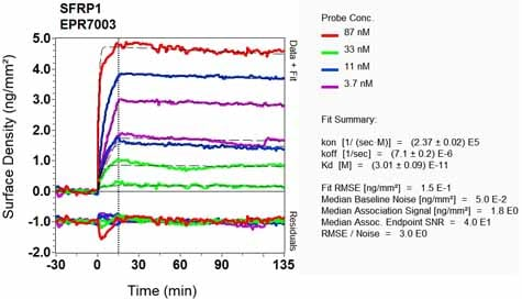 OI-RD Scanning - Anti-SFRP1 antibody [EPR7003] (ab126613)