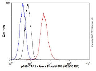 Flow Cytometry - Anti-p150 CAF1/CAF antibody [EPR5576(2)] (ab126625)