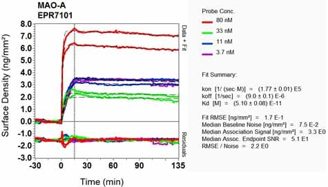 Other - Anti-Monoamine Oxidase A/MAO-A antibody [EPR7101] (ab126751)