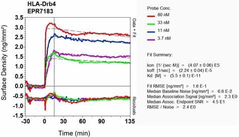 Other - Anti-HLA-DRB4 antibody [EPR7183] (ab126767)