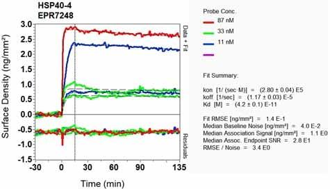 OI-RD Scanning - Anti-DNAJA1 antibody [EPR7248] (ab126774)
