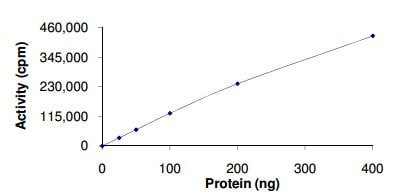 Functional Studies - Recombinant human Flt4 protein (ab126923)
