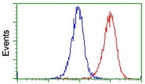 Flow Cytometry - Anti-PADI4 / PAD4 antibody [OTI4H5] (ab128086)