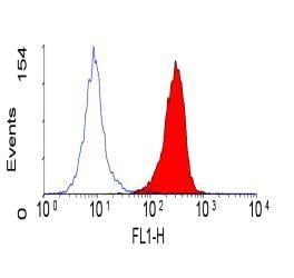 Flow Cytometry - Anti-CEACAM1 + CEACAM6 + CEACAM3 antibody [YTH71.3] (ab128720)