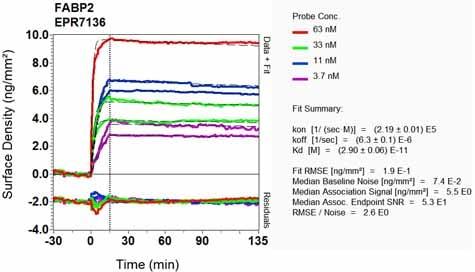Other - Anti-I-FABP antibody [EPR7136] (ab128860)