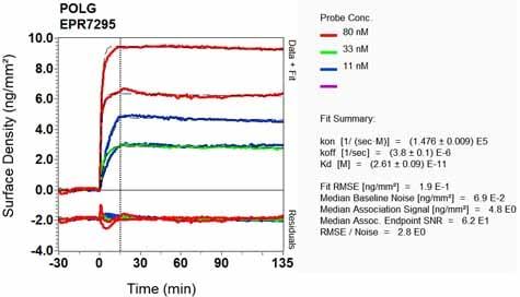 Other - Anti-POLG antibody [EPR7295] (ab128862)
