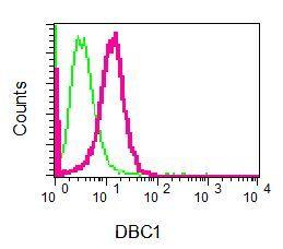 Flow Cytometry - Anti-DBC1 antibody [EPR7311] (ab128890)