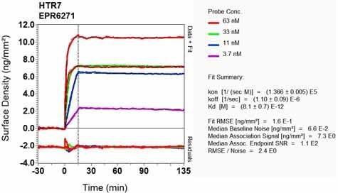 Other - Anti-5HT7 Receptor antibody [EPR6271] (ab128892)