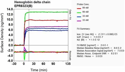 Other - Anti-Hemoglobin subunit delta antibody [EPR8323(B)] (ab128940)