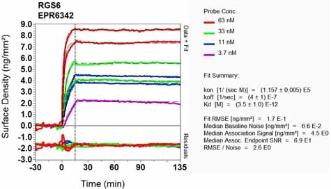Other - Anti-RGS6 antibody [EPR6342] (ab128943)