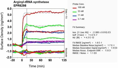 OI-RD Scanning - Anti-RARS antibody [EPR6298] (ab128956)