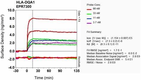Other - Anti-HLA-DQA1 antibody [EPR7300] (ab128959)