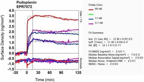 Other - Anti-Podoplanin / gp36 antibody [EPR7072] (ab128994)