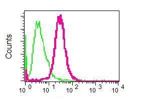 Flow Cytometry - Anti-Arp2 antibody [EPR7979] (ab129018)