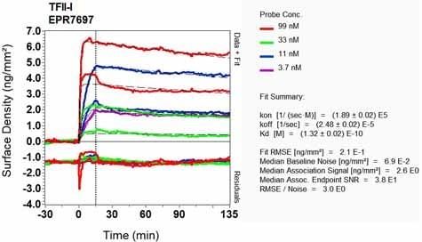 OI-RD Scanning - Anti-TFII I antibody [EPR7697] (ab129025)
