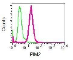 Flow Cytometry - Anti-PIM2 antibody [EPR6987] (ab129057)
