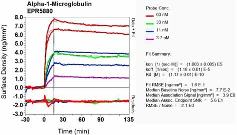 Other - Anti-Alpha 1 microglobulin antibody [EPR5880] (ab129059)