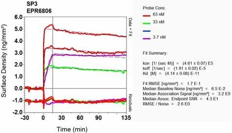 OI-RD Scanning - Anti-SP3 antibody [EPR6806] (ab129099)