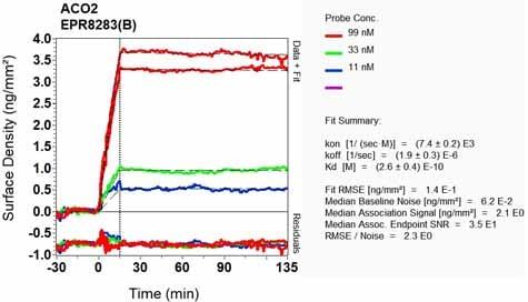 OI-RD Scanning - Anti-Aconitase 2 antibody [EPR8283(B)] (ab129105)