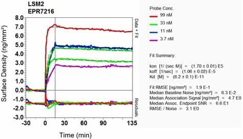 Other - Anti-LSM2 antibody [EPR7216] (ab129164)