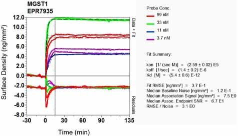 Other - Anti-MGST1 antibody [EPR7935] (ab129175)