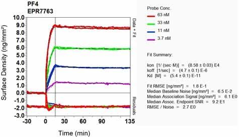 OI-RD Scanning - Anti-PF4 antibody [EPR7763] (ab129183)