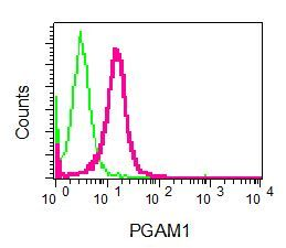 Flow Cytometry - Anti-PGAM1 antibody [EPR8042] (ab129191)