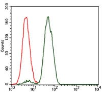 Flow Cytometry - Anti-Nck antibody [5B7] (ab129367)