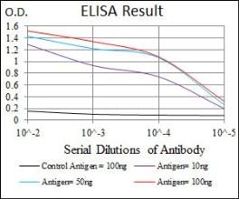 ELISA - Anti-Nck antibody [5B7] (ab129367)